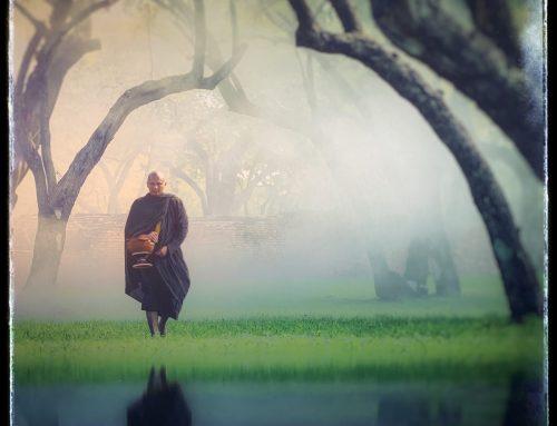 10 gewoontes uit het Zen boeddhisme die jou aan het stuur van je leven zetten